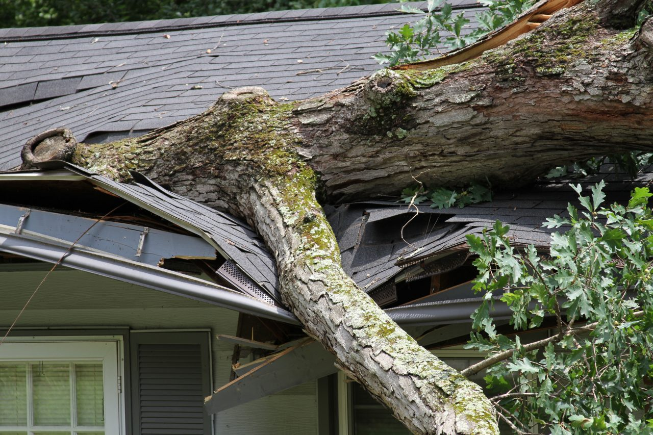 https://www.911claims.net/wp-content/uploads/2019/07/Canva-Roof-Damage-1280x853.jpg